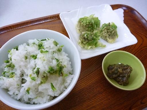 Fukinotou1