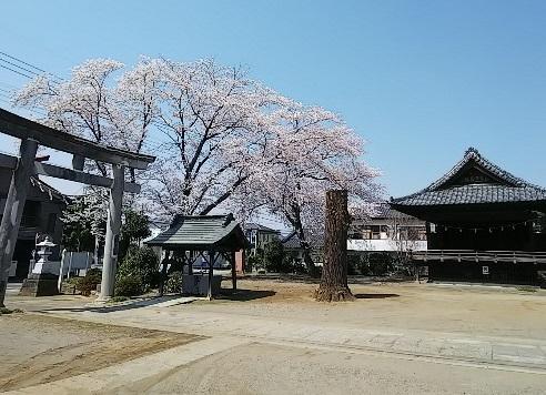 Hikawahachiman1