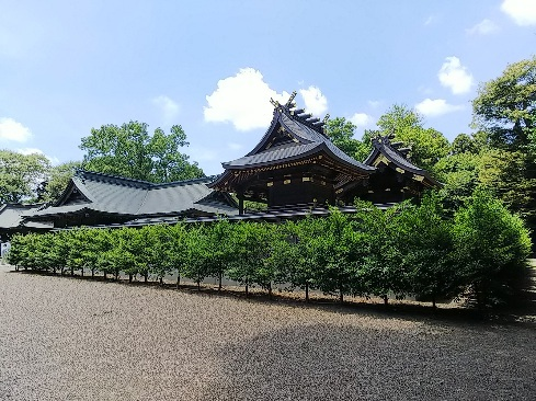 Washimiya1