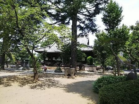 Kaneiji2